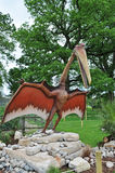 Pterodactyl dinosaur. A model of a pterodactyl dinosaur standing on rocks in a country park setting Royalty Free Stock Photo