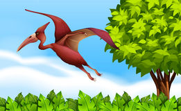 A Pterodactyl. Illustration of a Pterodactyl in nature Stock Image