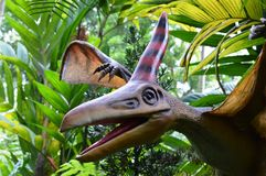 Pterodactyl Stock Photography