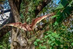 Pterodactylus de vliegende dinosaurus Stock Afbeeldingen