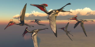 Pterodactylus Pterosaurs in Flight. A flock of Pterodactylus Pterosaurs fly out to the ocean to hunt for fish in the Jurassic Period Stock Photography