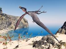 Pterosaur Dorygnathus Immagine Stock