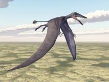 Pterosaur Dorygnathus Immagini Stock