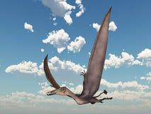 Pterosaur Dorygnathus Stock Images