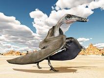 Pterosaur Dorygnathus Stock Photo