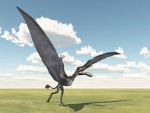 Pterosaur Dorygnathus Stock Photography