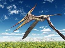 Pterosaur Pteranodon ilustração stock