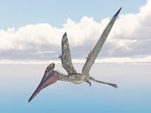 Pterosaur Pterodactylus Stock Photo