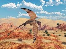Pterosaur Rhamphorhynchus Stock Photo
