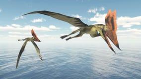 Pterosaur Thalassodromeus Stock Photos