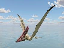 Pterosaur Thalassodromeus Stock Photo
