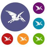 Pterosaurs dinosaur icons set. In flat circle red, blue and green color for web Stock Photos