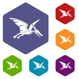 Pterosaurs dinosaur icons set hexagon. Isolated vector illustration Royalty Free Stock Images