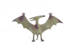 Pterosaurs dinosaur toy Royalty Free Stock Photos