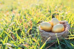 Pthree golden eggs on grass to represent wealth and luck and easter concept royalty free stock images