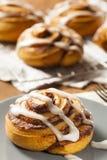 Pâtisserie faite maison de petit pain de cannelle Photographie stock libre de droits