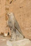 Ptolemaic świątynia Horus, Edfu, Egipt Zdjęcia Royalty Free