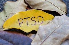PTSD scritto sulla foglia immagine stock