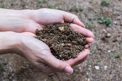 Puñado de Rich Soil Fotografía de archivo libre de regalías