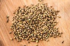 Puñado de semillas de coriandro teñidas Fotografía de archivo libre de regalías