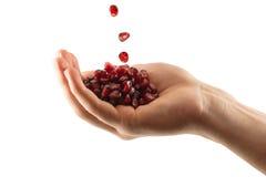 Puñado de semillas de la granada Imagen de archivo