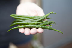 Puñado del chile verde Foto de archivo