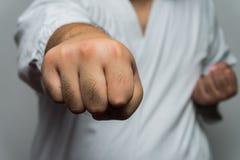 Puño del hombre del karate Foto de archivo