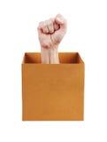 Puño humano inclinado fuera de la caja Imagen de archivo