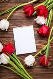 Puści etykietki, czerwieni i bielu tulipany, kwitną na rocznika drewnianym bac Zdjęcie Royalty Free