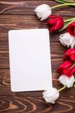 Puści etykietki, czerwieni i bielu tulipany, kwitną na rocznika drewnianym bac Zdjęcia Royalty Free