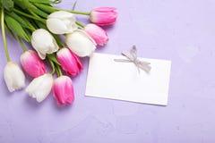 Puści etykietki i tulipanów kwiaty na fiołku textured tło Obrazy Royalty Free