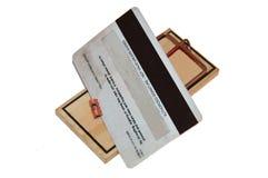 pułapka na myszy kredytów z karty, Fotografia Royalty Free