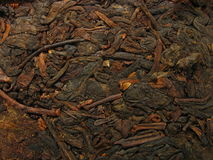 Pu-erh tea closeup. Chinese Pu-Erh tea. Dark tea, usually is compressed into bricks or caces Royalty Free Stock Photo