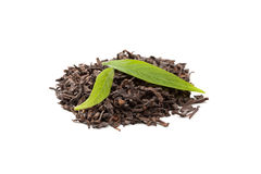 Pu-erh tea with fresh tea leaves on white Stock Photography