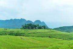 Pu Luong自然保护区在越南的清化省 图库摄影