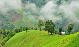 山的看法在Pua区 免版税图库摄影