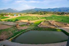 Pua il punto di riferimento di nordico della Tailandia, Paddy Land per viaggiare Fotografia Stock Libera da Diritti