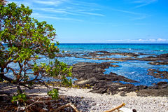 Puako夏威夷 免版税图库摄影