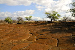 Puako Petroglyphs on Kohala Coast, Hawaii Stock Photo