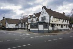 Pub för vit häst Fotografering för Bildbyråer