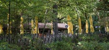 Pub garden with yellow sun umbrellas Royalty Free Stock Photography