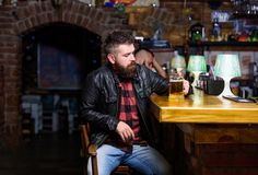 Pub great place to dine drink and have fun. Hipster relaxing at pub. Guy bearded man sit at bar counter in pub. Man with. Pub great place to dine drink and have royalty free stock photo