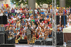Pubblico esterno di concerto Immagine Stock