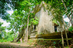 Public ancient  left in the forest for hundred years in Wat Somdej temple Royalty Free Stock Images