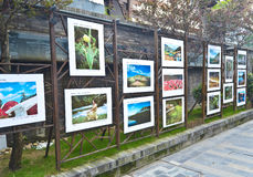 Public art exhibition Stock Image