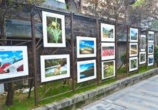 Public art exhibition stock image
