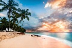 Public beach in Cayo Levantado, Dominican Republic. Exotic long exposure seascape with palm trees at sunset, on a public beach in Cayo Levantado, Dominican Royalty Free Stock Photo