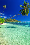 Public beach on the north side of Moorea island, French Polynesi Royalty Free Stock Photography