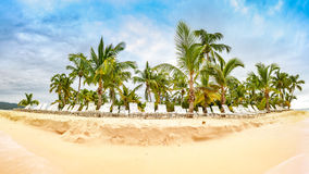 Public beach with palm trees. In Cayo Levantado island, Dominican Republic Stock Image