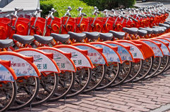 Public bicycles. In Guangzhou, China Stock Photography